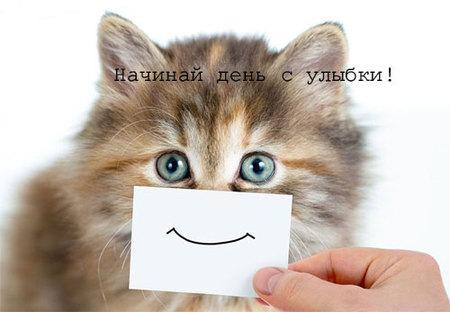 Прикольная открытка, с добрыми приколами к доброму утру