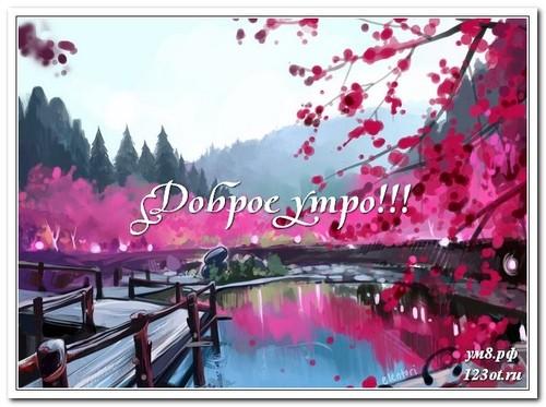 Доброго утра и хорошего дня, открытка мужчине, мужу, красивая природа