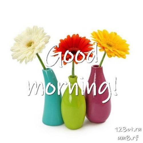 Доброе утро и отличного дня, картинка с цветами девушке, женщине