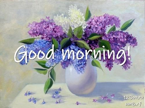Доброе утро и отличного дня, картинка с природой, с цветами девушке, женщине