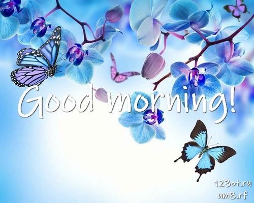 Доброе утро и отличного дня, открытка с цветочками (цветы) девушке, женщине
