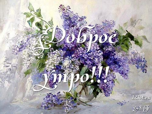 Доброе утро и отличного дня, открытка с красивыми цветами девушке, женщине