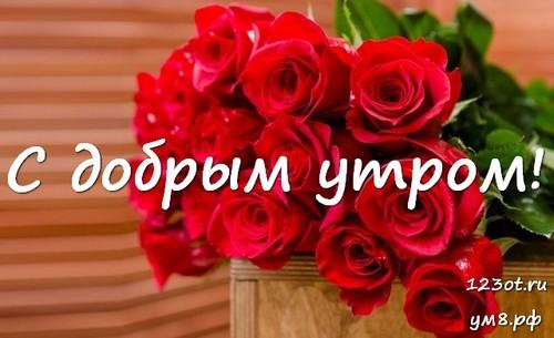 Доброе утро и отличного дня, открытка с красивыми цветами для девушки, женщины