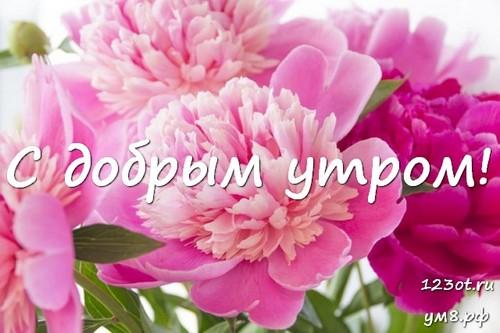 Доброго утра и хорошего дня, открытка с цветами женщине, жене