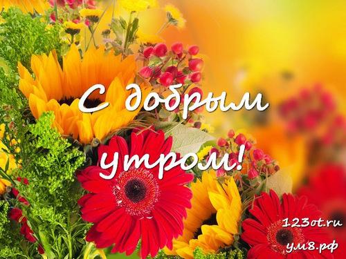 Доброго утречка, картинка с цветочками (цветы) девушке, женщине