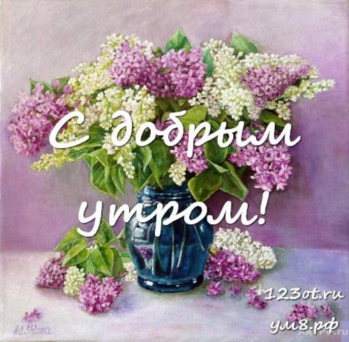 Доброго утречка, картинка с красивыми цветами девушке, женщине