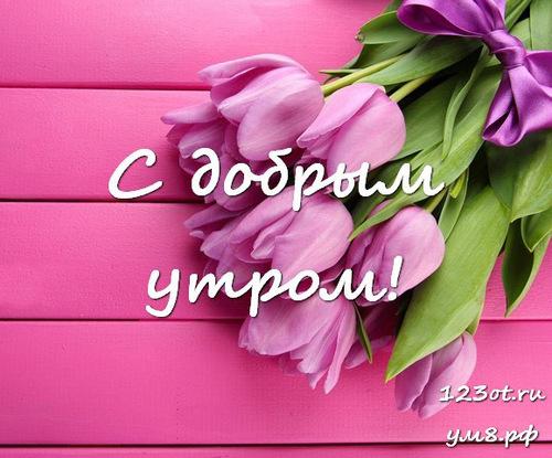 Доброго утречка, картинка с природой, с цветами девушке, женщине