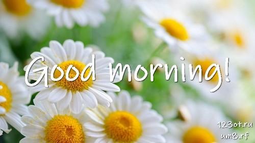 Прекрасного утра, картинка с цветами женщине, жене